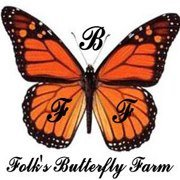 Folk's Butterfly Farm