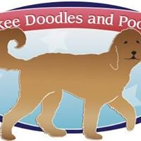 Yankee Doodles and Poodles