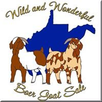 Wild and Wonderful Boer Goat Sale