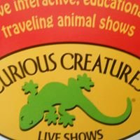 Curious Creatures-Branford CT