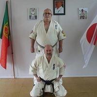 Kyokushin Karate Viana do Castelo - Seishin Kyokushin Portugal