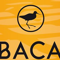 BACA - Brasserie Artisanale de la Côte d'Amour