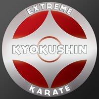 Extreme Kyokushin Karate