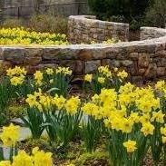UC Master Gardener Program of Mariposa County