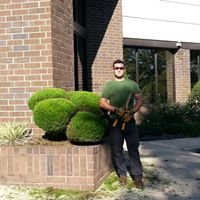 CCF Tree Services