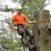 ATS Tree Services LLC
