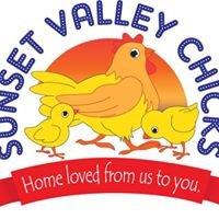 Sunset Valley Chicks