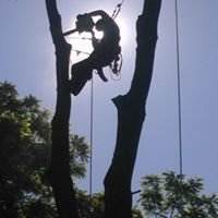 Tree Tech Tree Services Inc.
