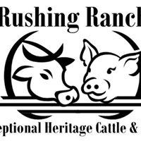Rushing Ranch - Heritage Pasture Beef & Pork