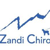 Zandi Chiropractic, LLC