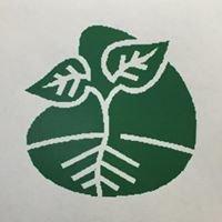 Suburban Plants