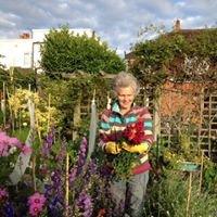 Linda Bostock, Medical Herbalist