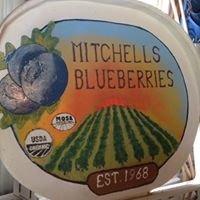 Mitchell's Blueberries