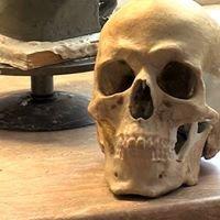 Múmiák, csontok, antropológusok