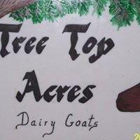Treetop-Acres Dairy Goats