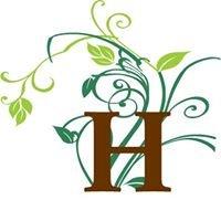 Healthwise Naturopathic Clinic