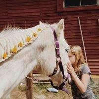 Livery Equestrian Camp LLC