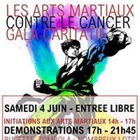 Les Arts Martiaux Contre Le Cancer