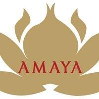 Amaya LLC