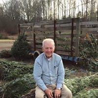 Holly Berry Christmas Tree Farm