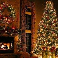 Barr Evergreens Christmas Trees Wilmington