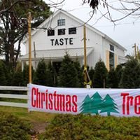 Olson & Sons Christmas Trees