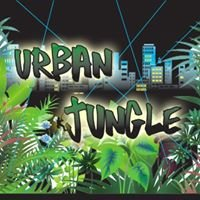 Urban Jungle Laser Tag