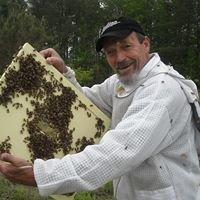 Blackwater Honey Bee Farm