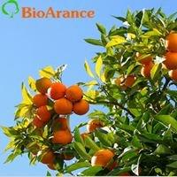 Bioarance Alesci - arance biologiche