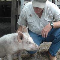 Johnston's Farm LLC