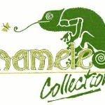 Chameleon Collection