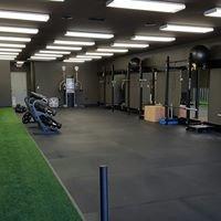 Winchester Spine & Sport