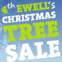 4th Ewell Scouts Christmas Tree Sale