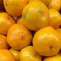 Nardi Produce