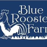 Blue Rooster Farm