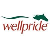 Wellpride Omega-3 for Horses