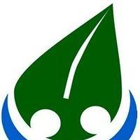 Satucita Foundation