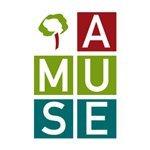 Associazione AMUSE