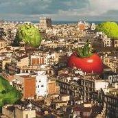 Orti Urbani Torino -Come costruire un orto urbano sul balcone 3489256757