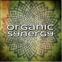 Organic Synergy