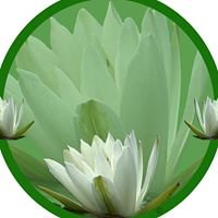 The Floating Lily Natural Therapy