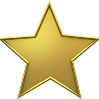 Gold Star Nannies