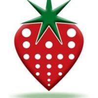 Strawberry International Spa Supplies