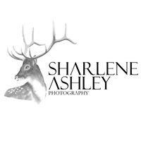 Sharlene Ashley Photography